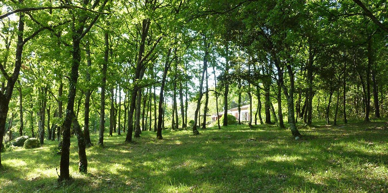 Vakantiehuis Dordogne - Huur uw vakantiehuis in de Dordogne